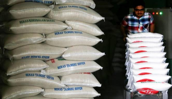 Para Petani Berharap Agar Pemerintah Tidak Mengimpor Beras