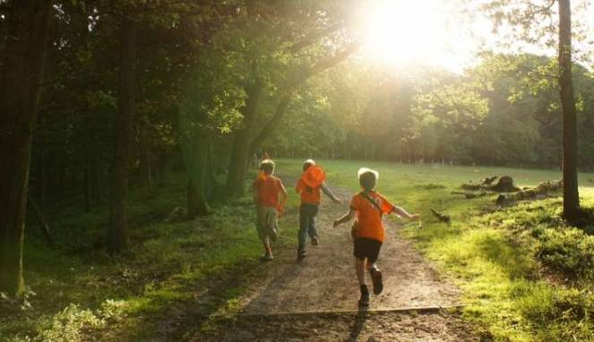 Rajin Olahraga Dapat Kembangkan Kreativitas Anak