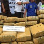 Polisi Bongkar Penyelundupan Ganja Dari Aceh