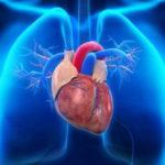 Gagal Jantung Bisa Diakibatkan Karena Jarangnya Berolahraga