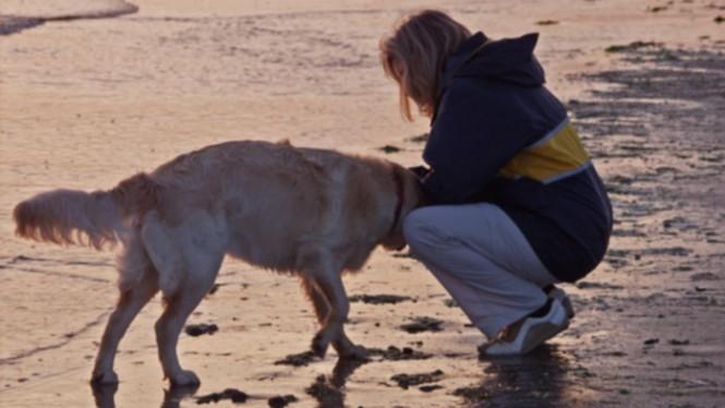 Kisah Wanita Amerika Minum Urine Anjing Untuk Sembuhkan Jerawat