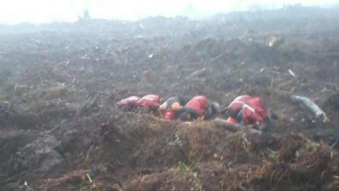 TNI Memiliki Strategi untuk Antisipasi Kebakaran Hutan