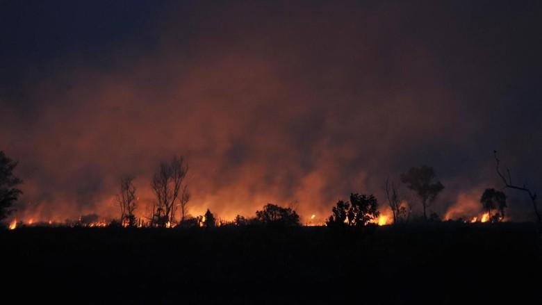 Gugatan PN Meulaboh Digagalkan PT Aceh Terkait Kebakaran Hutan
