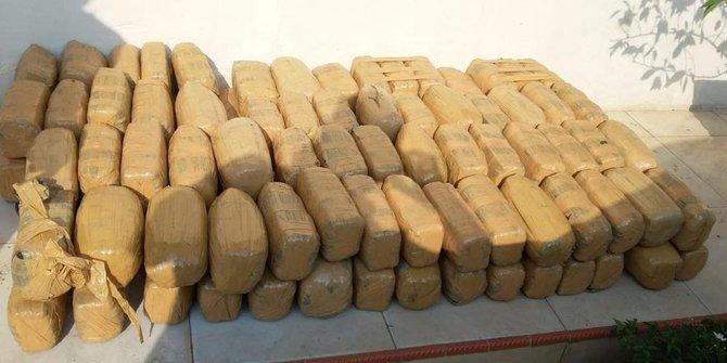 BNN Gagalkan Pengiriman Ganja 1.5 Ton Di Bogor