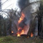 Seseorang Terbakar dalam Insiden Meledaknya Sumur Minyak Ilegal di Jambi